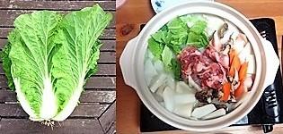 白菜料理_R.jpg
